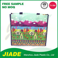 Biodegradable shopping bags wholesale/Funny shopping bag/Recycle PP woven shopping bag
