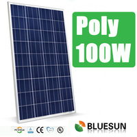 Bluesun hot sell 100w polycrystalline solar panel