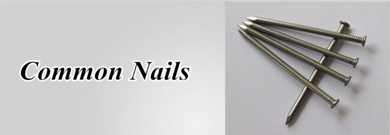 20mm common wire nails for wood in cartons