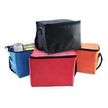 Non Woven Ice Freezer travel mini soft cooler bag