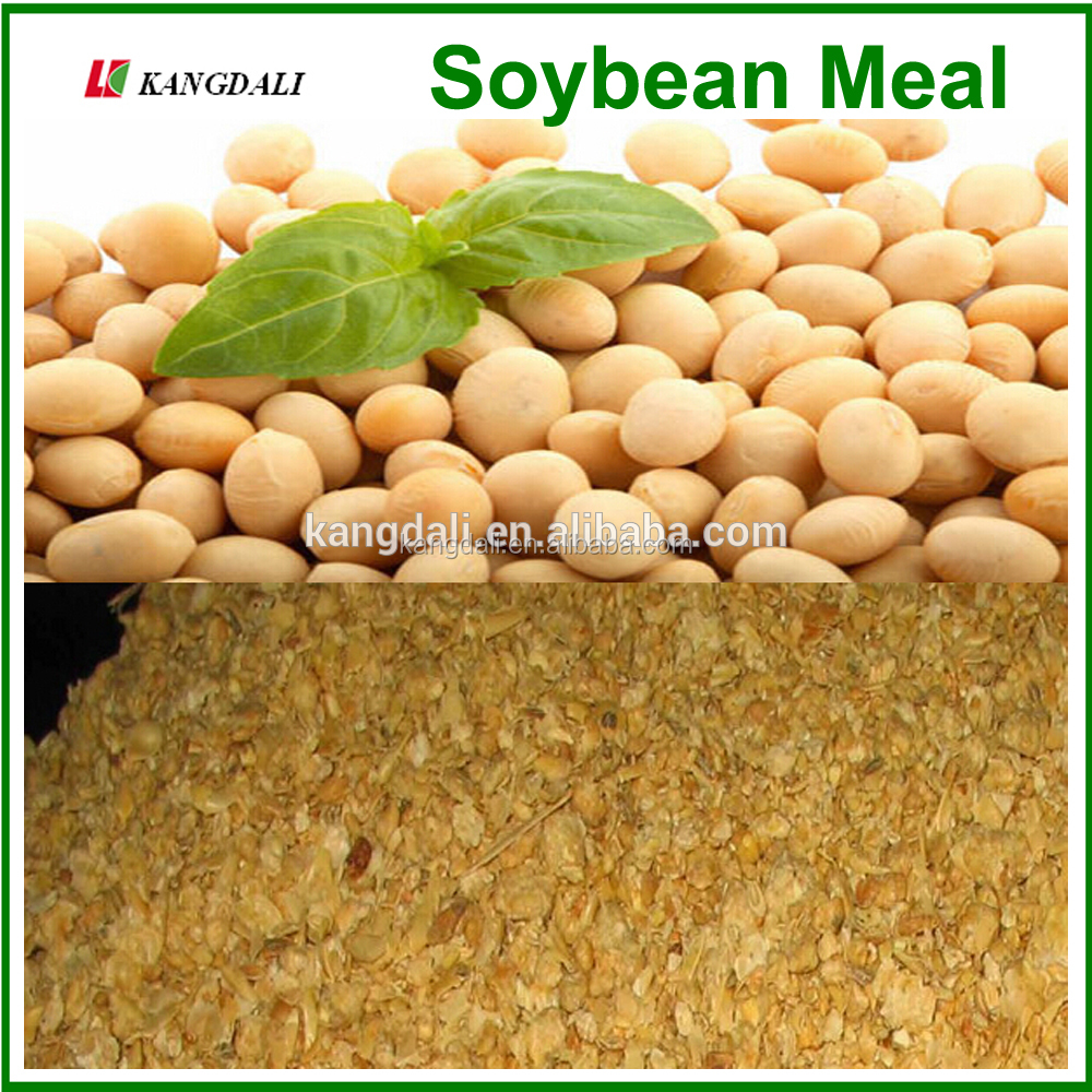 High Protein Non-Gmo Soybean Meal for Animal Feed