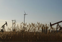 30KW Wind Turbine electric generating windmills for sale low noise