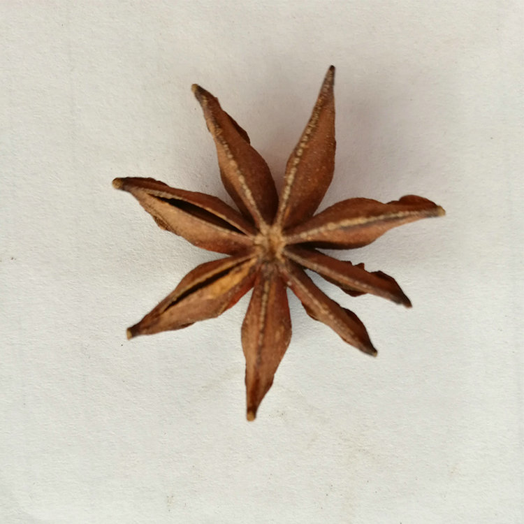high quality agricultural product vietnam star anise with low price
