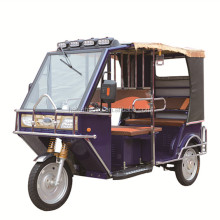 Hot Inda Bangladesh cheap passenger/cargo trike electric 3 wheel adult tricycle/TukTuk