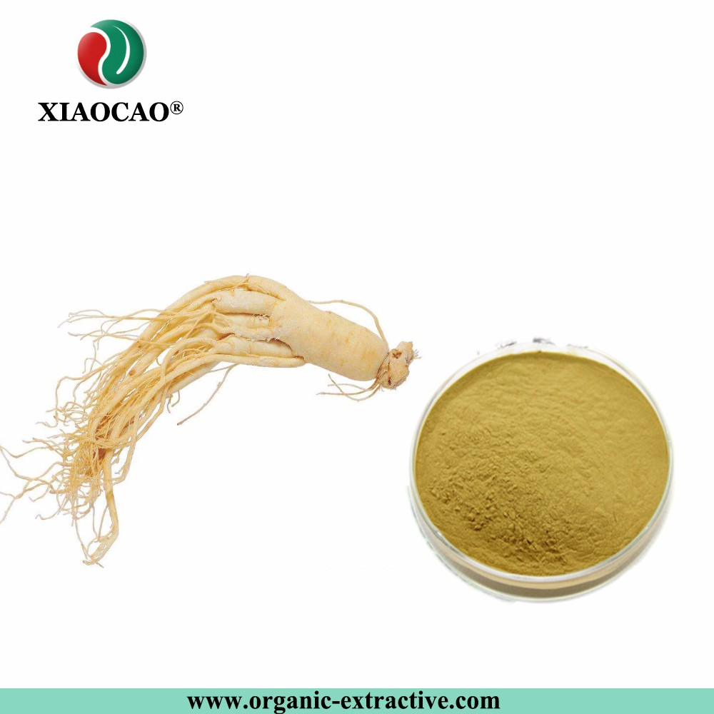 GMP Supply 100% Soluble In Water Panax Ginseng Extract Liquid,Panax Ginseng Powder