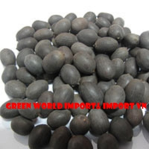 DRIED BLACK LOTUS SEED_PREMIUM QUALITY_CHEAP PRICE
