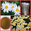 Top Quality 100% pure natural 10:1 bellis perennis flower extract
