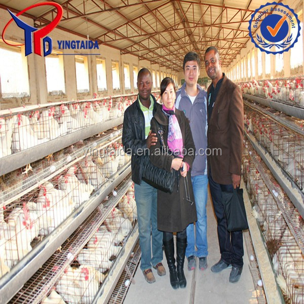 Hot sale A type layer poultry battery cages for kenya chicken farm