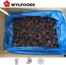 2017 china new crop frozen blackberry fruit with best prices