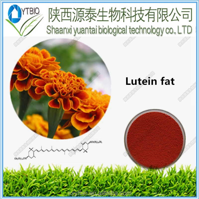Superior Natural Marigold Flower Extract Lutein Ester powder