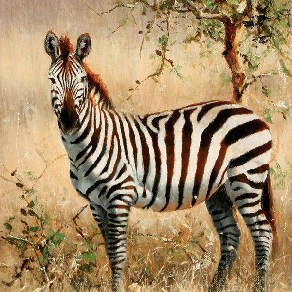 Zebra stripe tile mural wall 3d mural washable wall mural