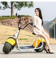 2016 the most fashionable citycoco 2 wheel electric scooter, adult electric motorcycle