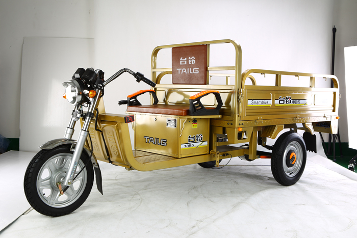Electric Three wheel motorcycle 650W 60V20Ah cheap cargo tricycle adults for sale