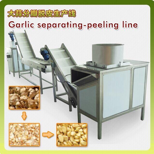 2 garlic peeling machine.jpg