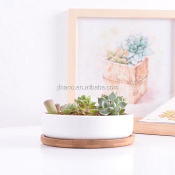 Creative 6 Inch Round White Ceramic Shallow Flower Pot