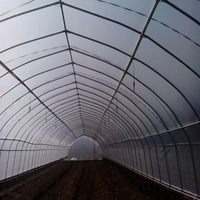 Polyethylene plastic greenhouse film for agriculture