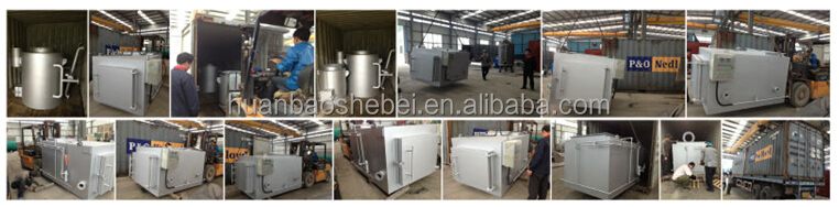 2Tons/day Hospital Waste Treatment Incinerator, with 3D video show installation and operation