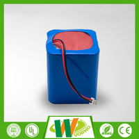 Factory direct 12 volt lithium ion battery, 18650 lithium ion battery,lithium ion battery 12v