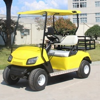 2 seater low speed safe golf cart electric small transport cart