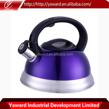 New Design Stainless Steel Tea Kettle