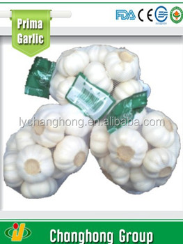 factory wholesale China garlic with lowest price