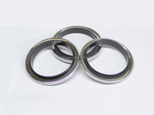 Metal Mechanical Ptfe Lip-rotary Shaft Seals