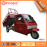 China Made Heavy Load Full Closed Driver Cabin 250CC Adult Cargo Carrier Tricycle