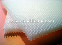PP honeycomb core board