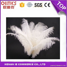 Factory Wholesale Artificial Ostrich Feathers