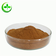 Hot Sale African Wild Mango Seed Extract