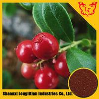 Natural Proanthocyanidins 5%-50% / Cranberry Extract / Vaccinium Macrocarpon L.