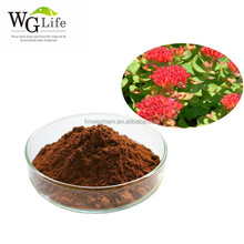 High Quality Factory Price Natural Rhodiola Rosea Extract Rosavin Powder