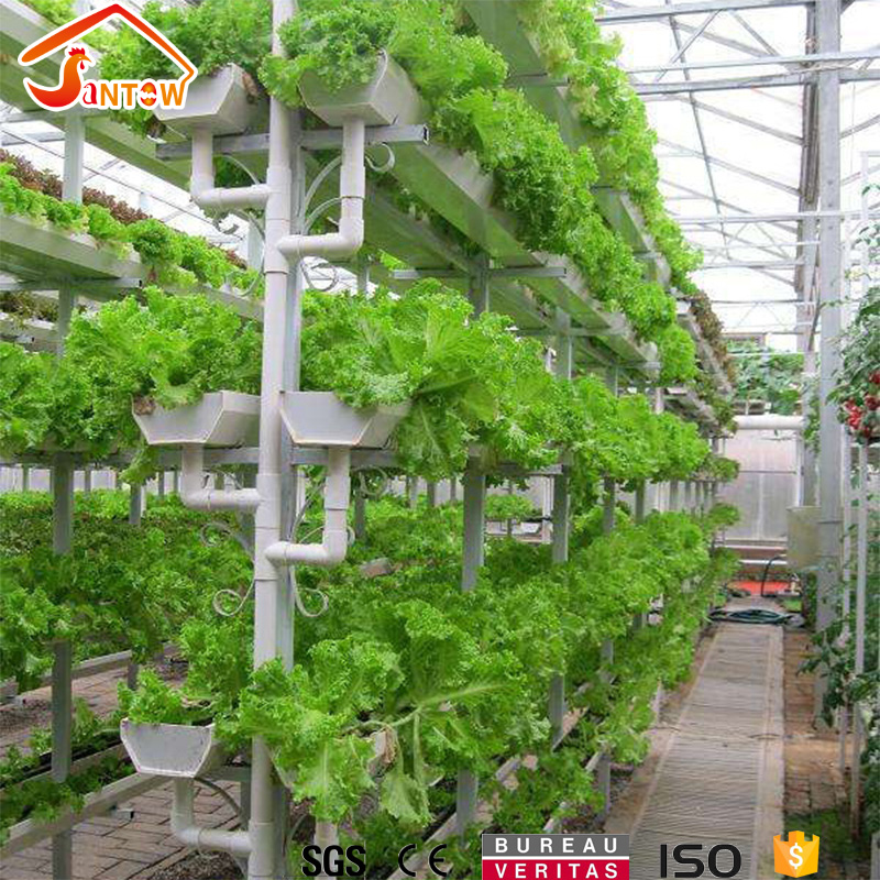 vertical grow wall aquaponics farms system