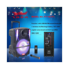 temeisheng feiyang 15 inch big power portable plastic speakers with wireless microphone DVD input usb sd fm radio bluetooth