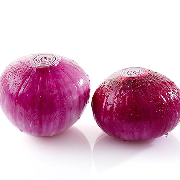 Top Quality Different Sizes Onion Export India