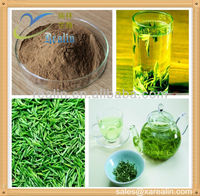 100% Natural Green Tea Extract Polyphenols 20%-98% EGCG 10%-95% Catechins 10%-90% HPLC