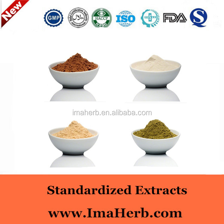 GMP Factory supply smilax glabra extract