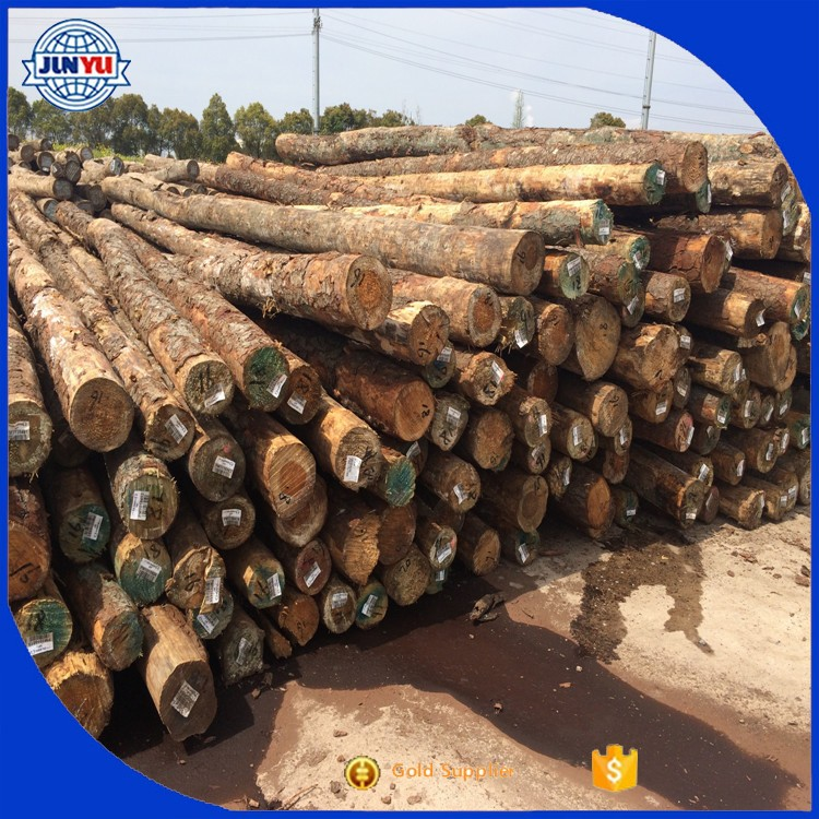 China pine wood lumber with best price on sale