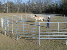 Horse/cattle livestock equipment for cow loops cow cubicle
