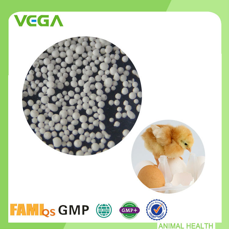 Veterinary medicine animal feed additives Enrofloxacin Manufacturer,Premium Quality Animal Medicine