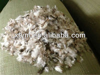 JIS L1903 Washed Grey Duck Feather For Sale
