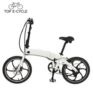 Singapore High Quality 20 Inch E Bike Green Power Electric Bicycle Made In China