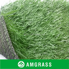 outdoor artificial soccer field grass sports playing surface