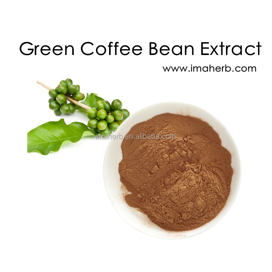 GMP Manufacture Halal Approved pure green coffee bean extract 50 chlorogenic acid in stock