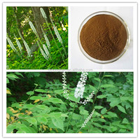 100% Natural Triterpene Glycosides 2.5%, 5%, 8% Black Cohosh Root Extract