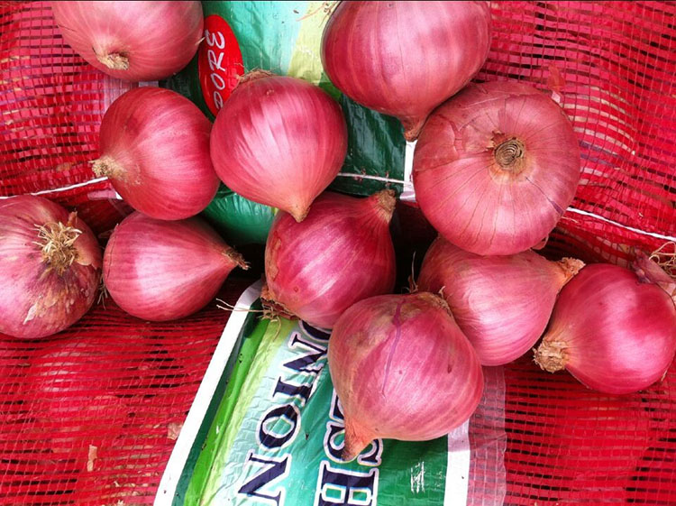 market price for yellow onion/red onion