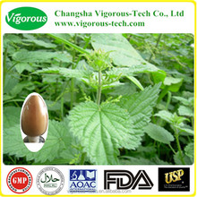 GMP Kosher 10:1 1% silica nettle root extract powder , nettle root extract