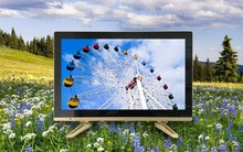 PAL SECAM NTSC display format tv china led tv price in india