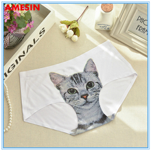AMESIN 3D Printed Women Underwear Cartoon Adult Seamless Custom Print Panties