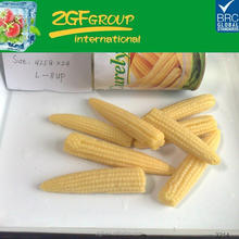canned sweet corn+baby corn+delicious food,easy to share